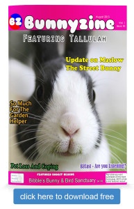 Bunnyzine Issue 10 Cover free download
