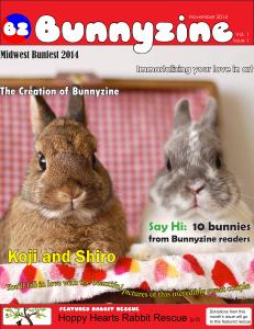 Bunnyzine cover v1i1